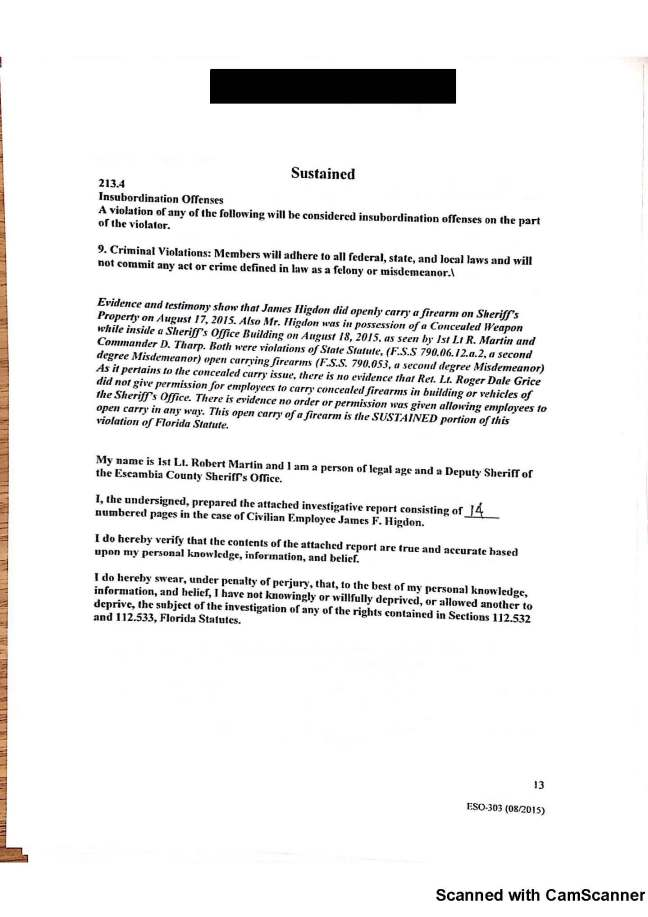 higdon investigation_Page_13