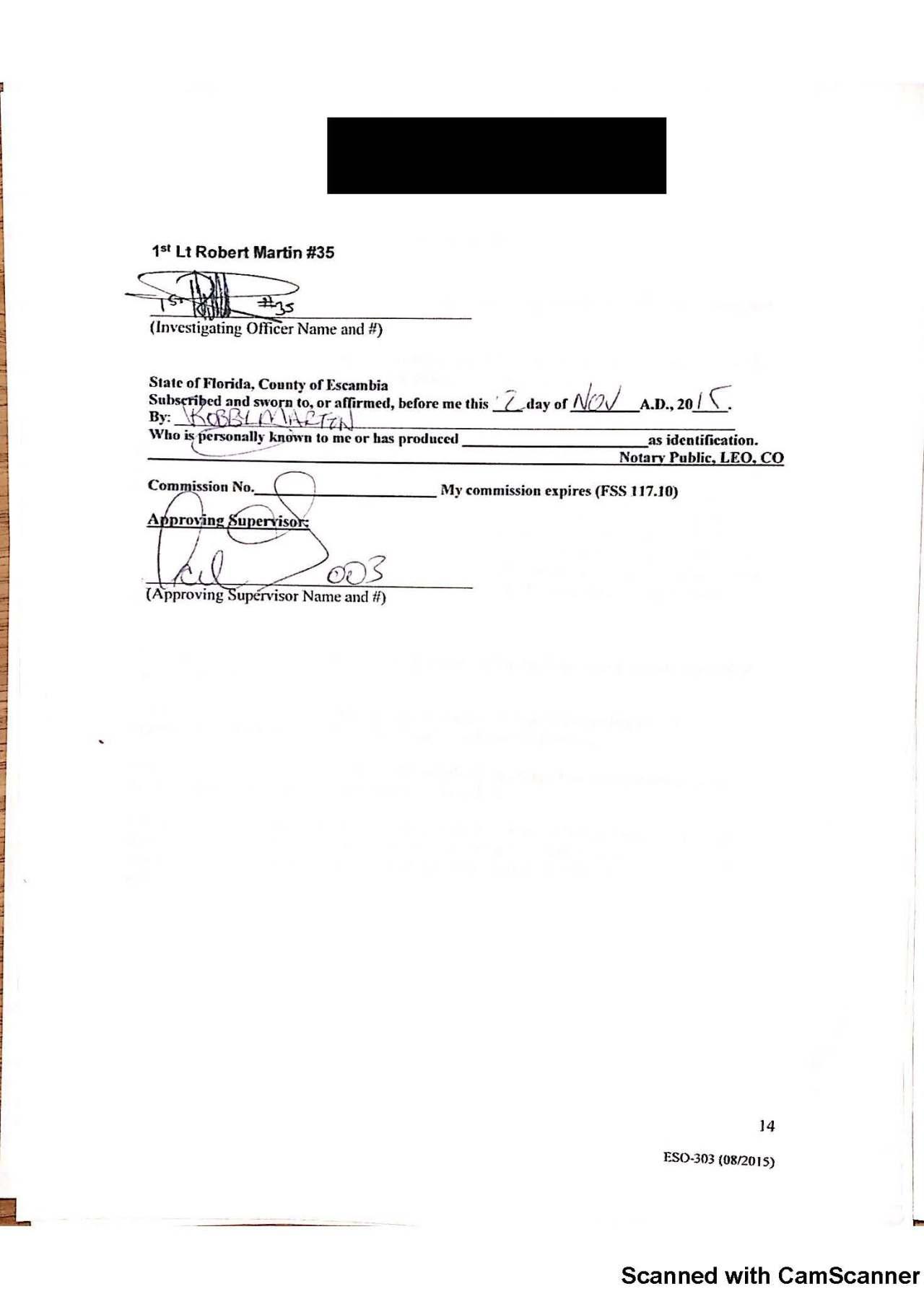 higdon investigation_Page_14